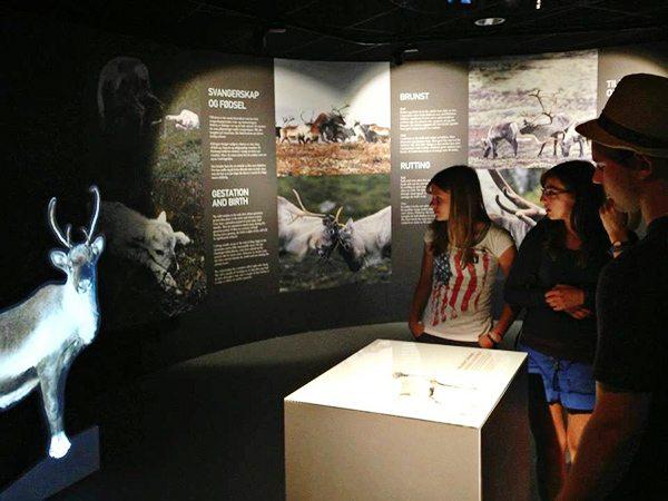 Interaktiv utstilling på Hardangervidda Nasjonalparksenter, Skinnarbu